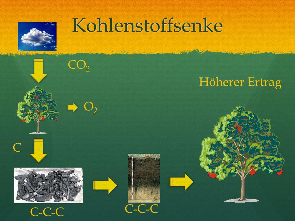 Kohlenstoffsenke CO2 Höherer Ertrag O2 C C-C-C C-C-C