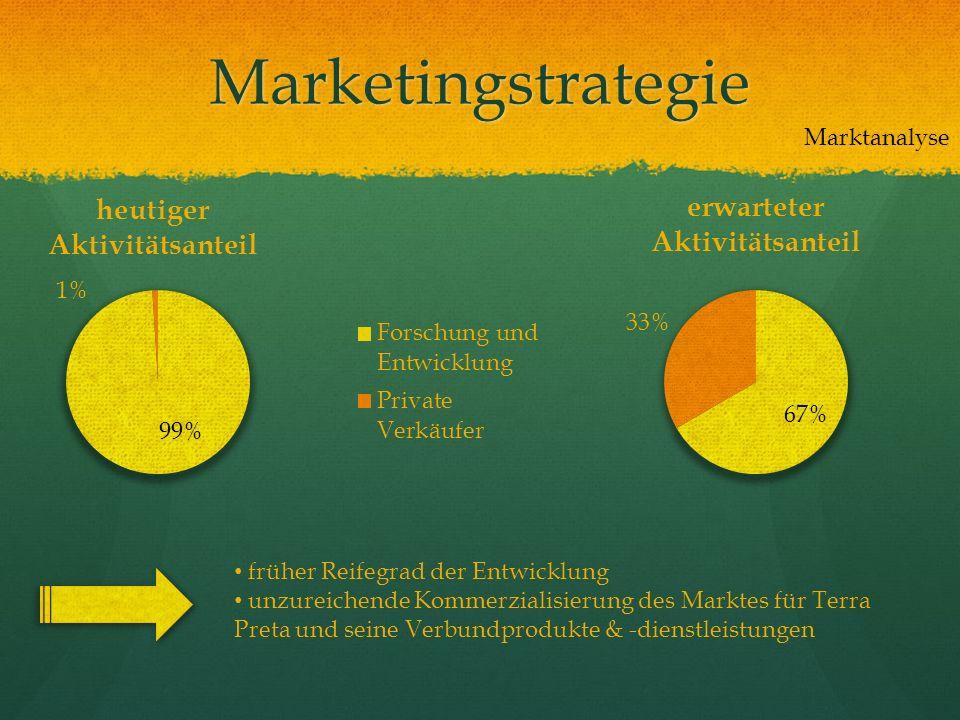 Marketingstrategie Marktanalyse früher Reifegrad der Entwicklung