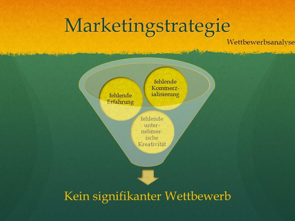 Marketingstrategie Kein signifikanter Wettbewerb Wettbewerbsanalyse