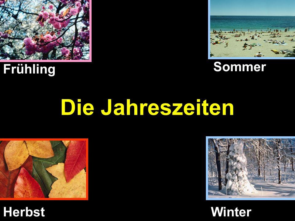 Sommer Frühling Die Jahreszeiten Herbst Winter