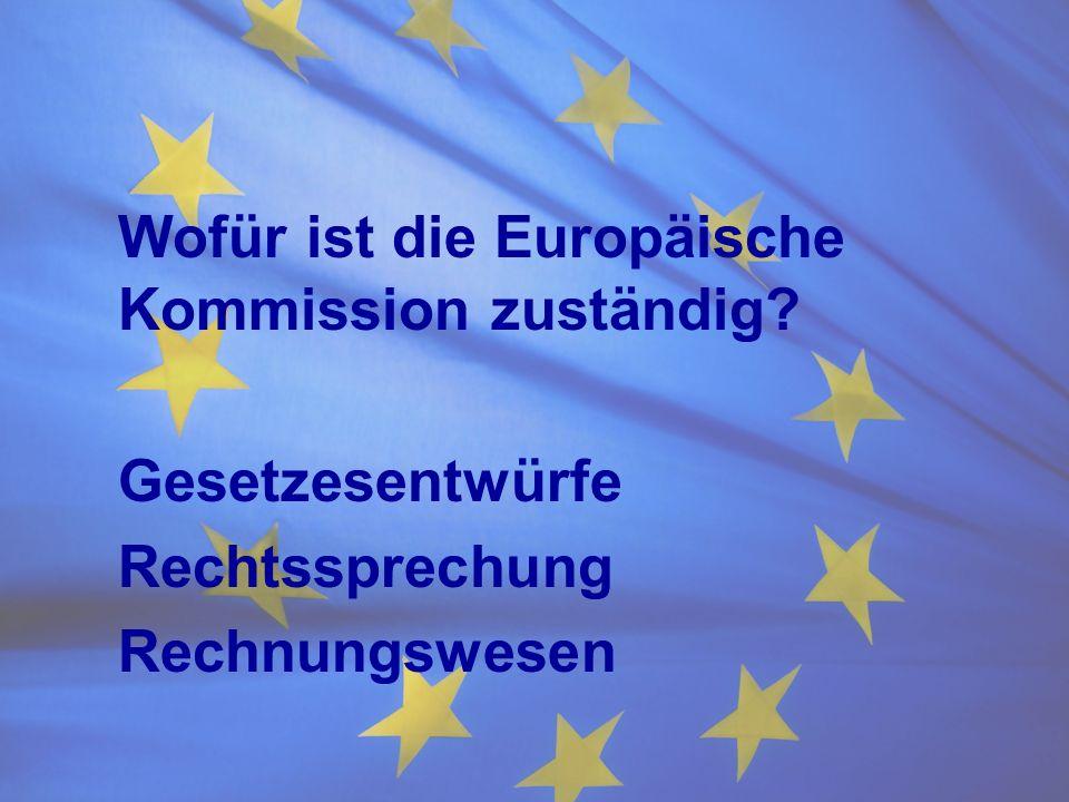 Wofür ist die Europäische Kommission zuständig