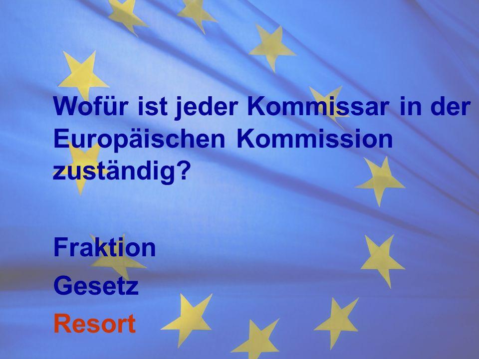 Wofür ist jeder Kommissar in der Europäischen Kommission zuständig