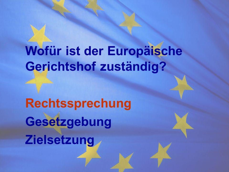 Wofür ist der Europäische Gerichtshof zuständig