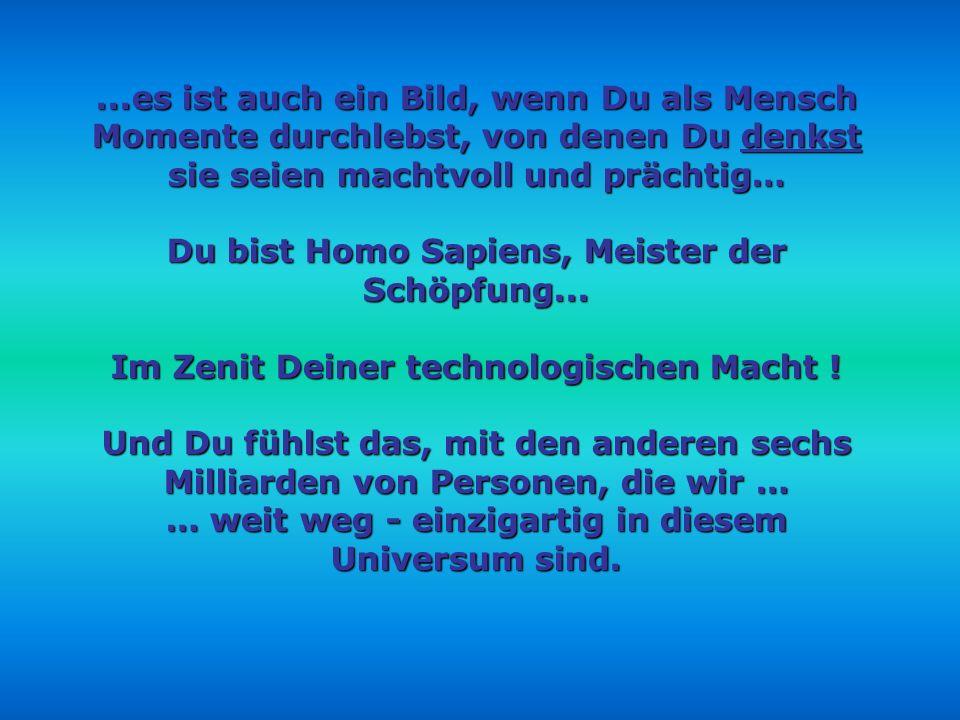 Du bist Homo Sapiens, Meister der Schöpfung...