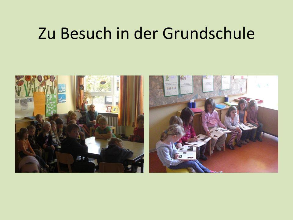Zu Besuch in der Grundschule