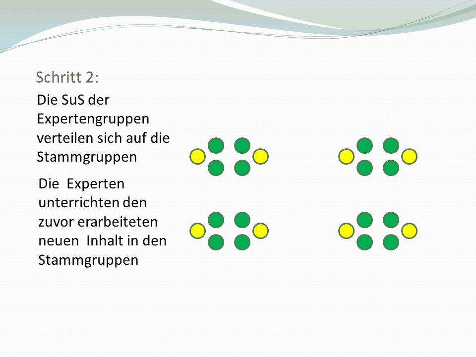 Schritt 2: Die SuS der Expertengruppen verteilen sich auf die Stammgruppen.