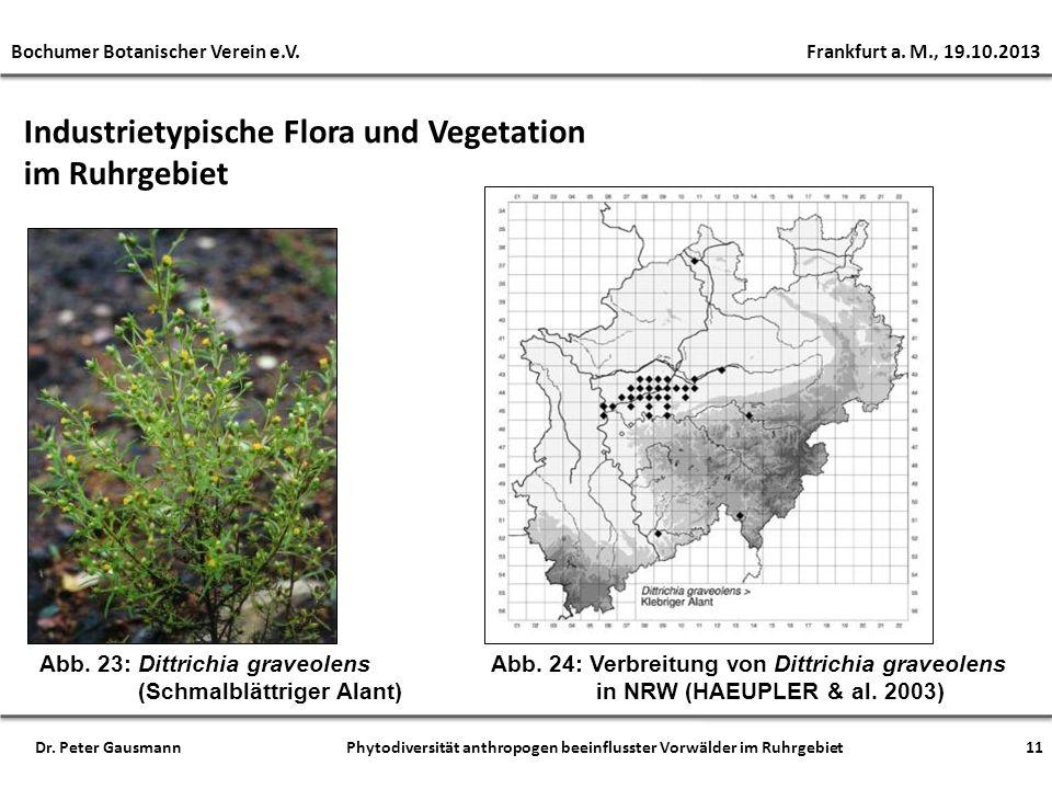 Industrietypische Flora und Vegetation im Ruhrgebiet