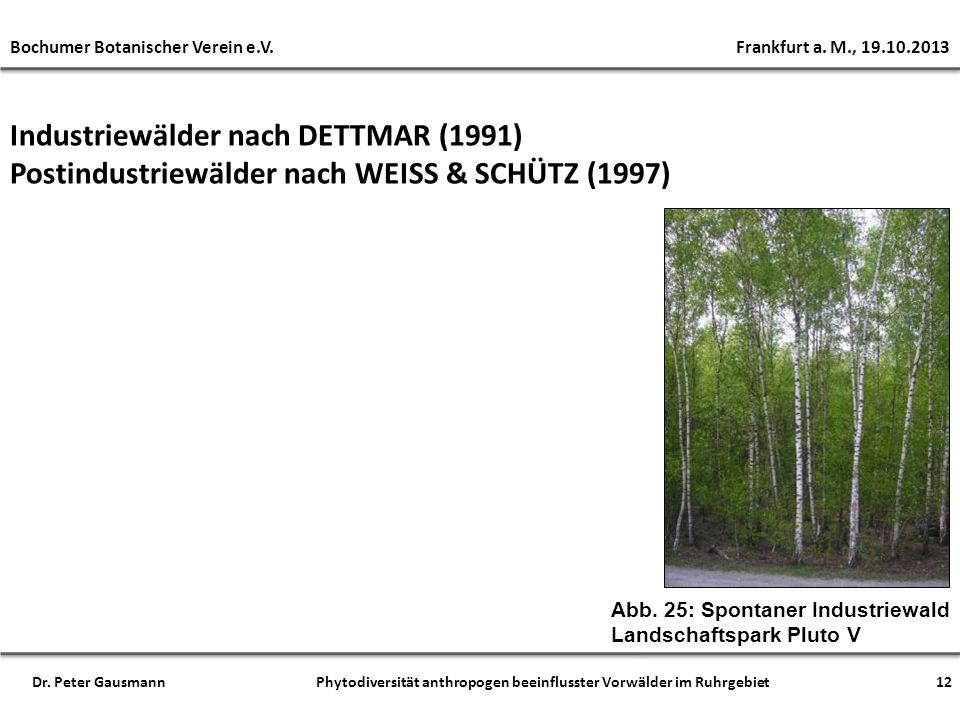 Industriewälder nach DETTMAR (1991)