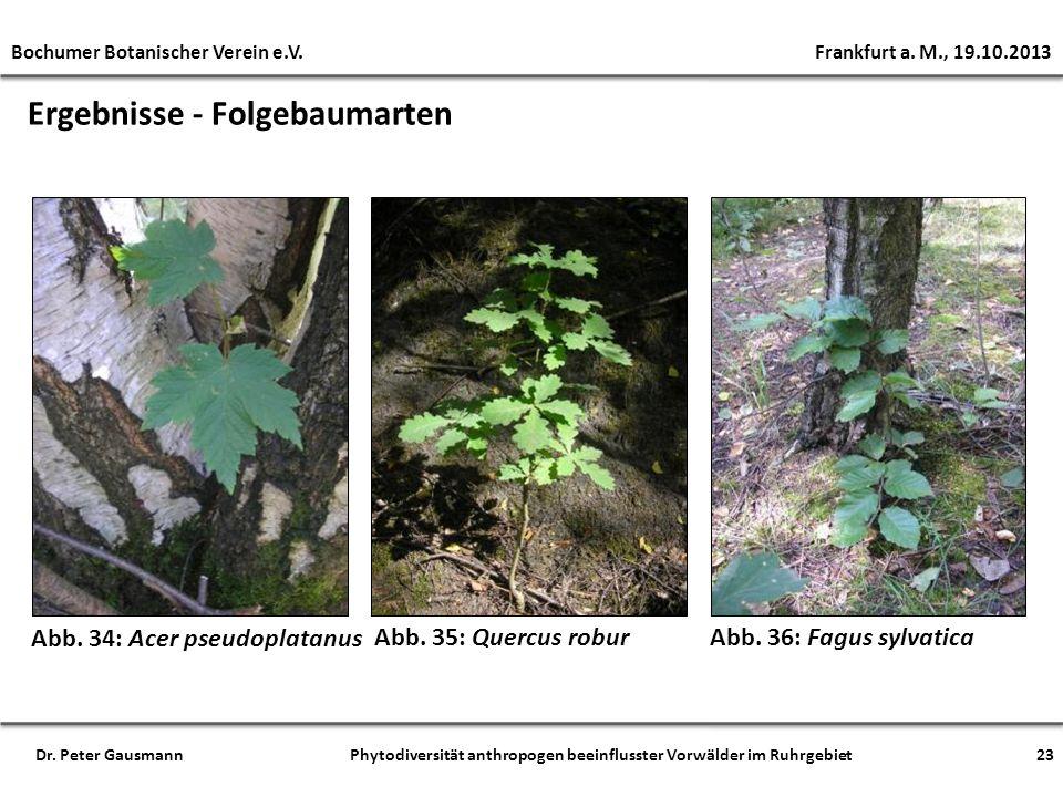 Ergebnisse - Folgebaumarten