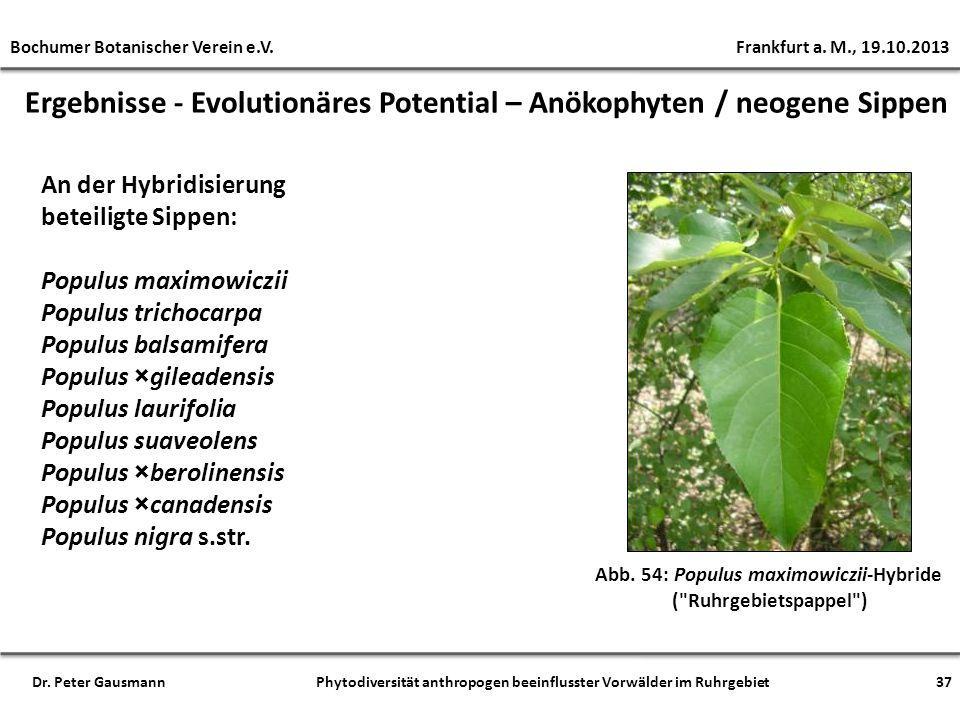Ergebnisse - Evolutionäres Potential – Anökophyten / neogene Sippen