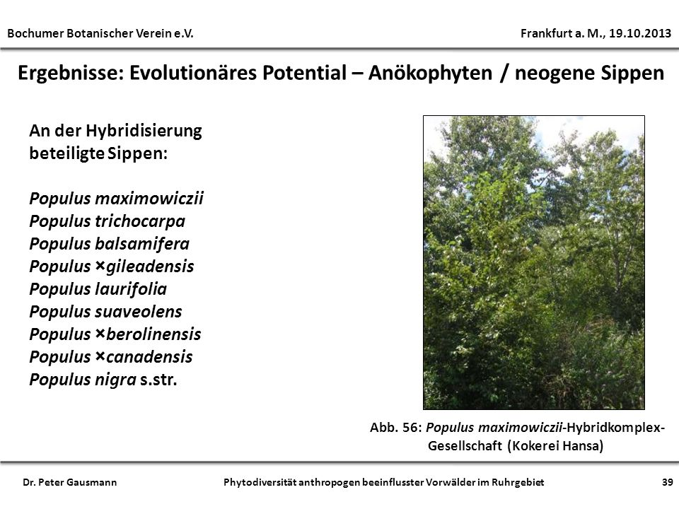Ergebnisse: Evolutionäres Potential – Anökophyten / neogene Sippen