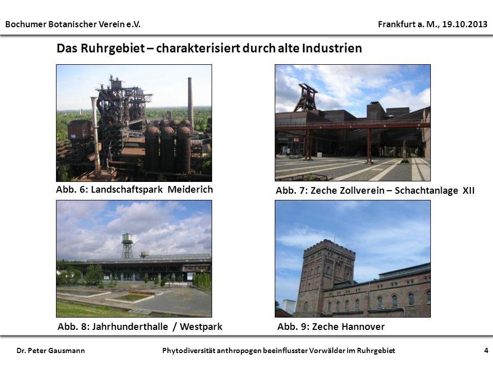 Das Ruhrgebiet – charakterisiert durch alte Industrien