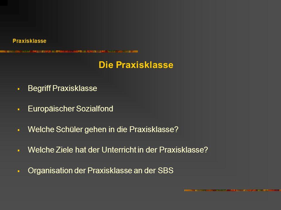 Die Praxisklasse Begriff Praxisklasse Europäischer Sozialfond