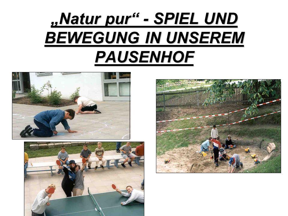 """""""Natur pur - SPIEL UND BEWEGUNG IN UNSEREM PAUSENHOF"""