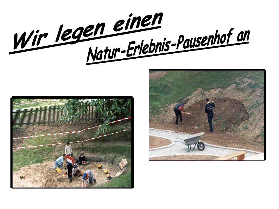 Natur-Erlebnis-Pausenhof an