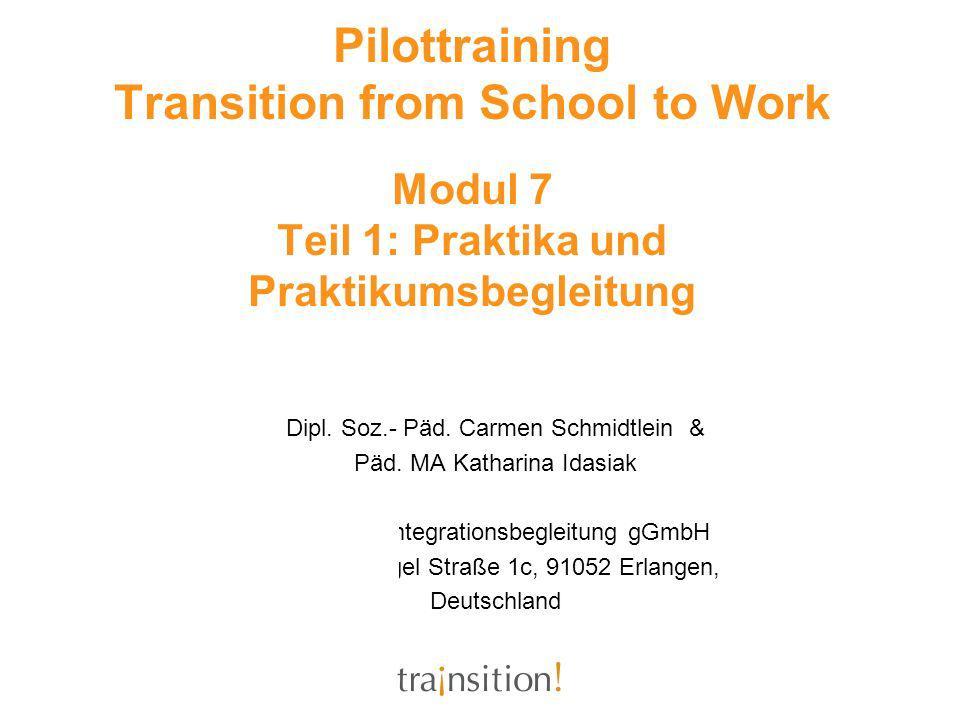 Pilottraining Transition from School to Work Modul 7 Teil 1: Praktika und Praktikumsbegleitung