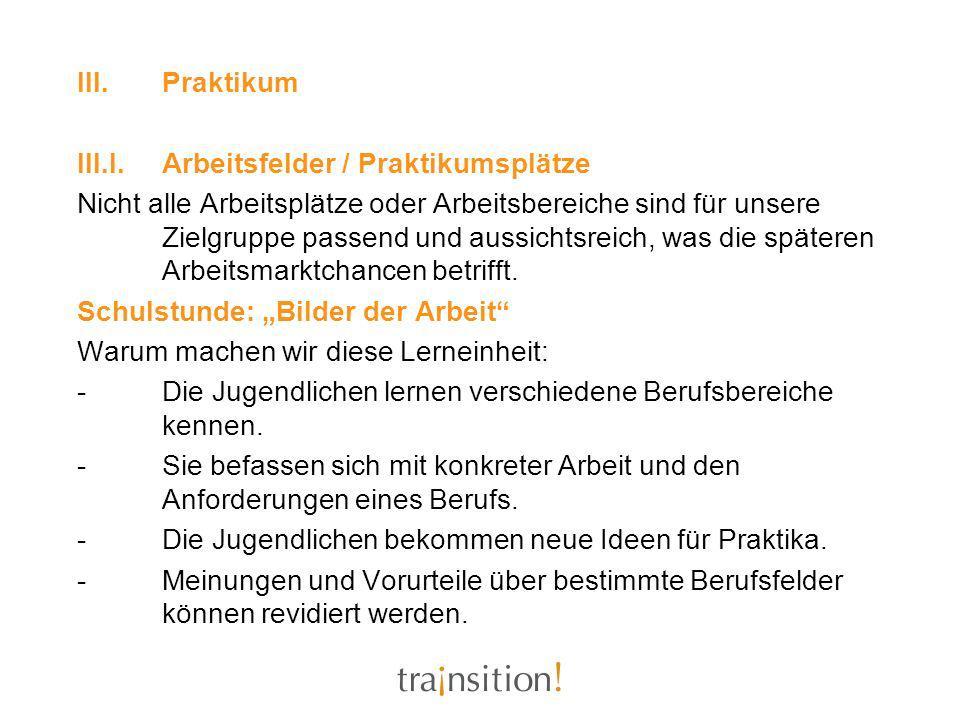 Praktikum III.I. Arbeitsfelder / Praktikumsplätze.