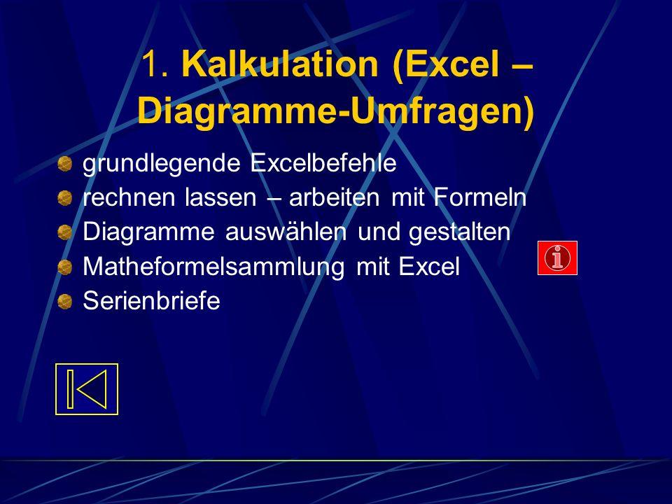 1. Kalkulation (Excel – Diagramme-Umfragen)