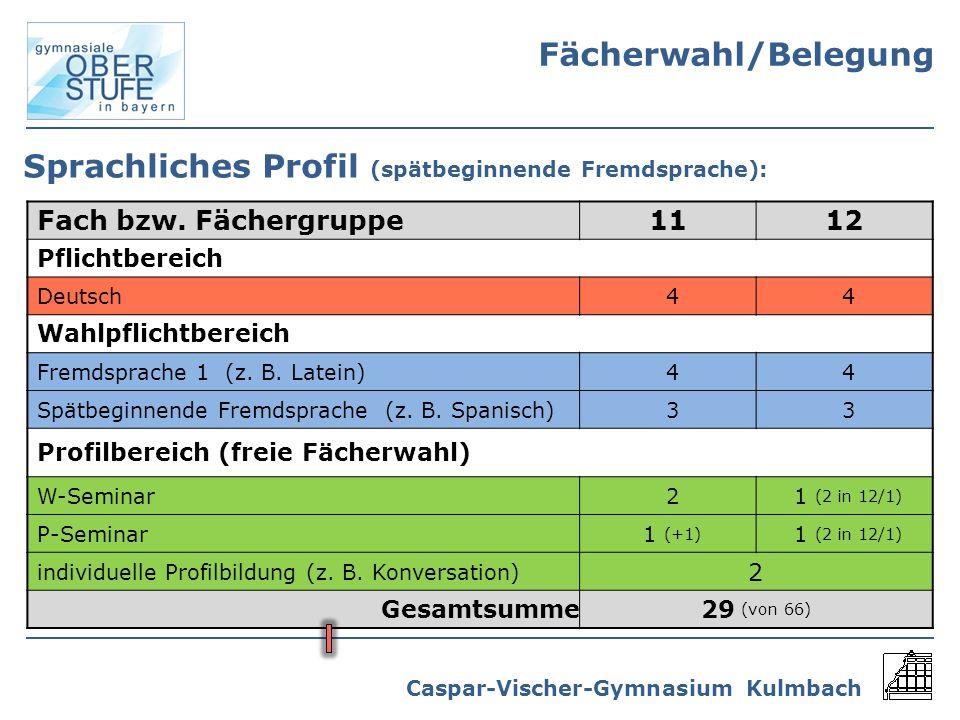 Sprachliches Profil (spätbeginnende Fremdsprache):
