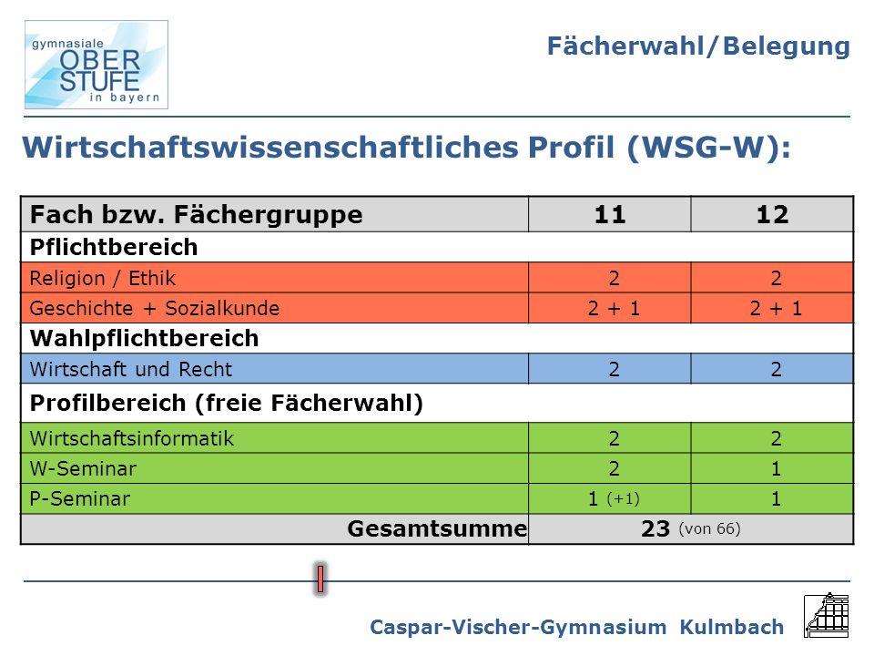 Wirtschaftswissenschaftliches Profil (WSG-W):