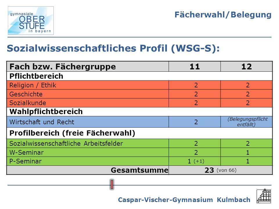 Sozialwissenschaftliches Profil (WSG-S):