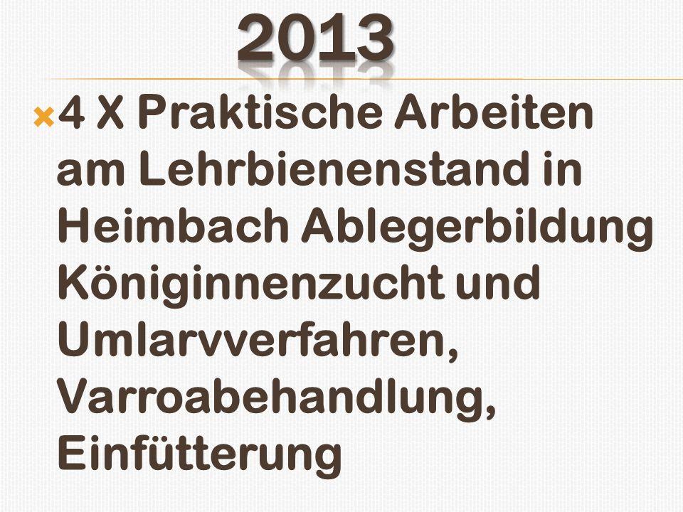 2013 4 X Praktische Arbeiten am Lehrbienenstand in Heimbach Ablegerbildung Königinnenzucht und Umlarvverfahren, Varroabehandlung, Einfütterung.