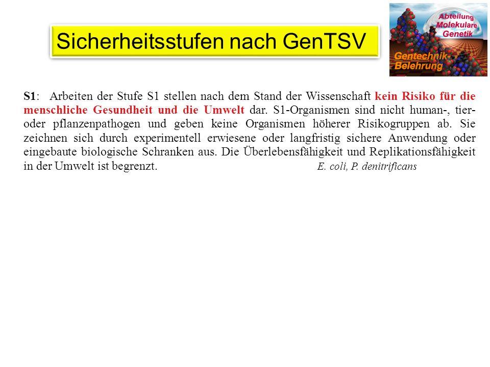 Sicherheitsstufen nach GenTSV
