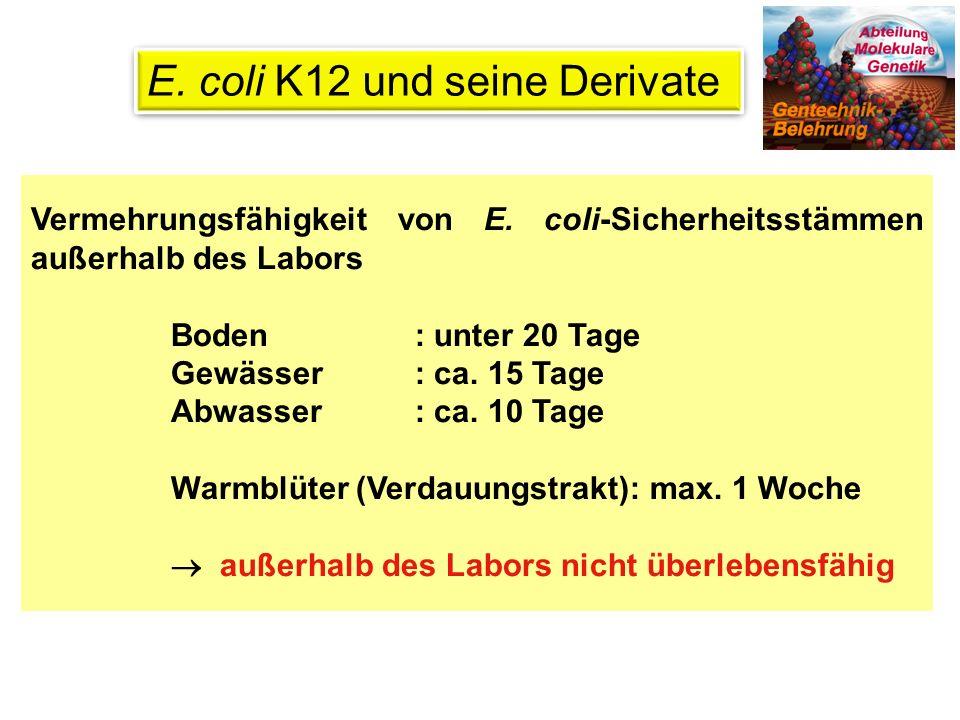 E. coli K12 und seine Derivate