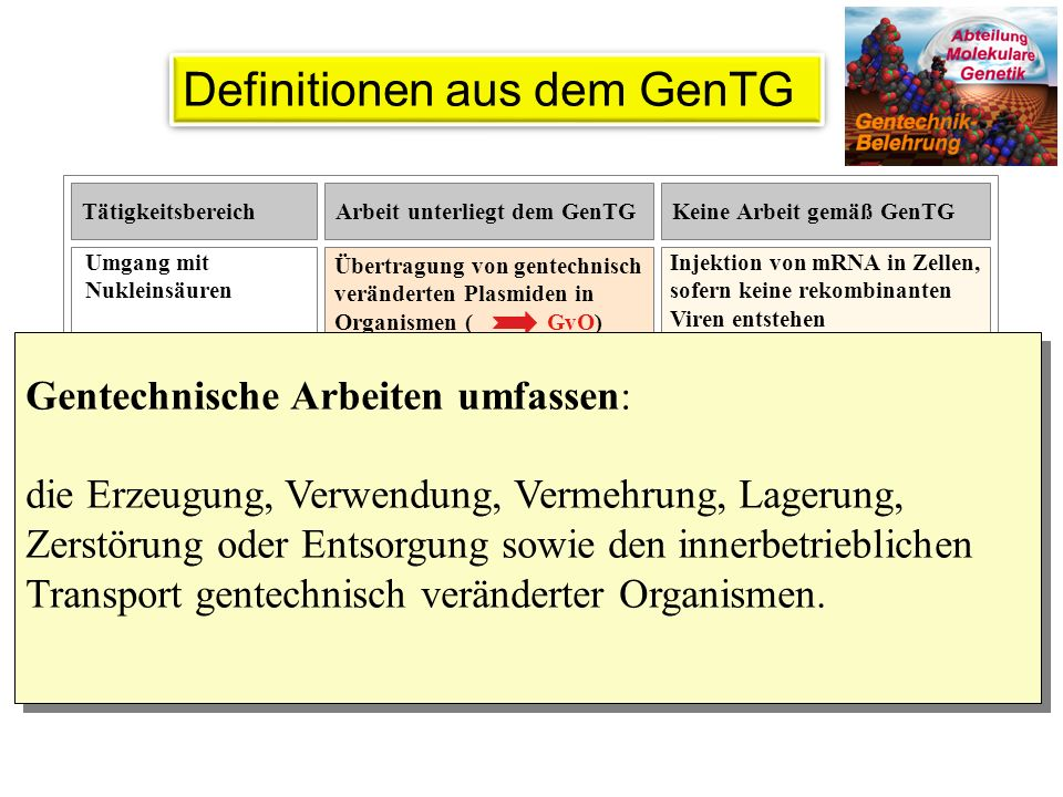 Definitionen aus dem GenTG