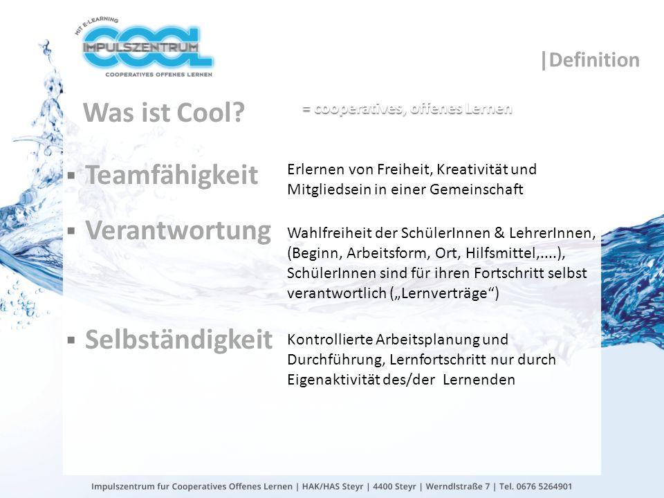 Was ist Cool Teamfähigkeit Verantwortung Selbständigkeit |Definition