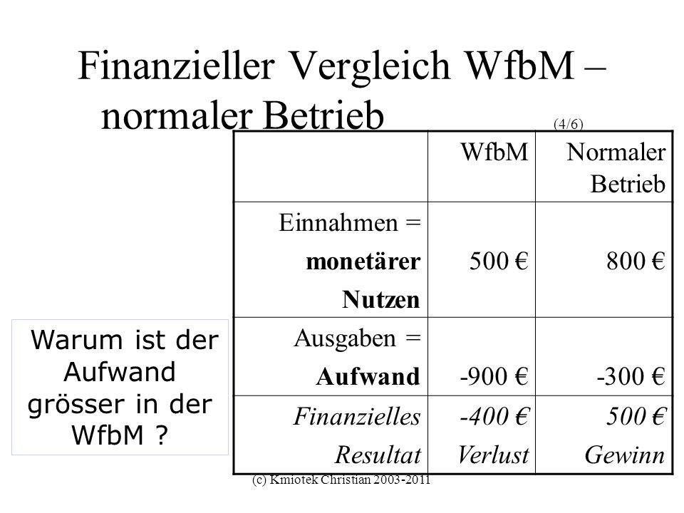 Finanzieller Vergleich WfbM – normaler Betrieb (4/6)