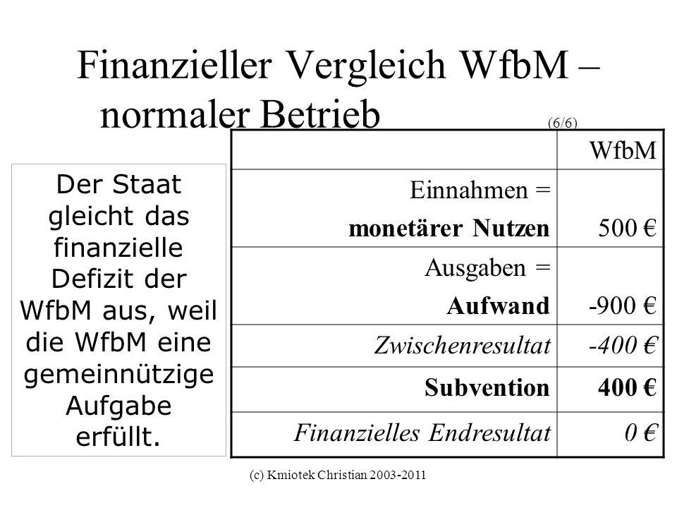 Finanzieller Vergleich WfbM – normaler Betrieb (6/6)