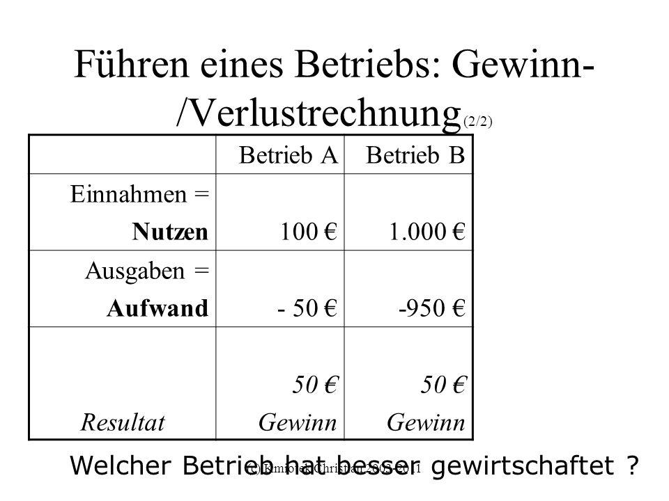 Führen eines Betriebs: Gewinn-/Verlustrechnung (2/2)