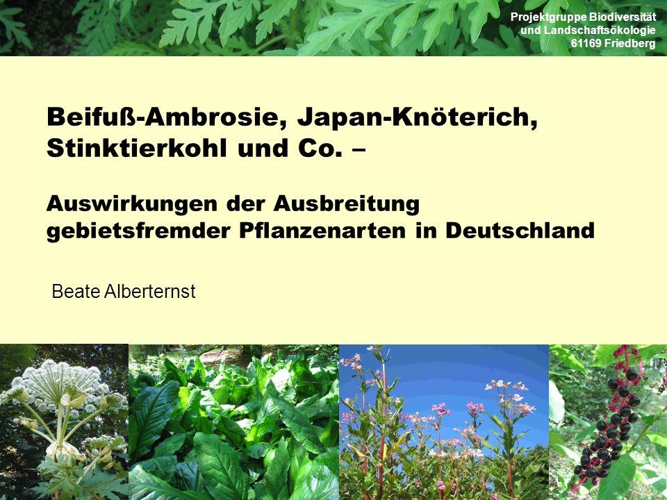 Beifuß-Ambrosie, Japan-Knöterich, Stinktierkohl und Co. –