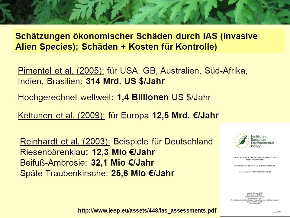 Hochgerechnet weltweit: 1,4 Billionen US $/Jahr