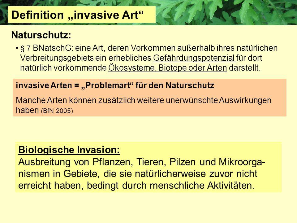 "Definition ""invasive Art"