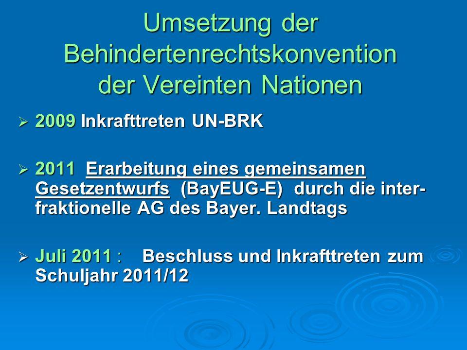 Umsetzung der Behindertenrechtskonvention der Vereinten Nationen