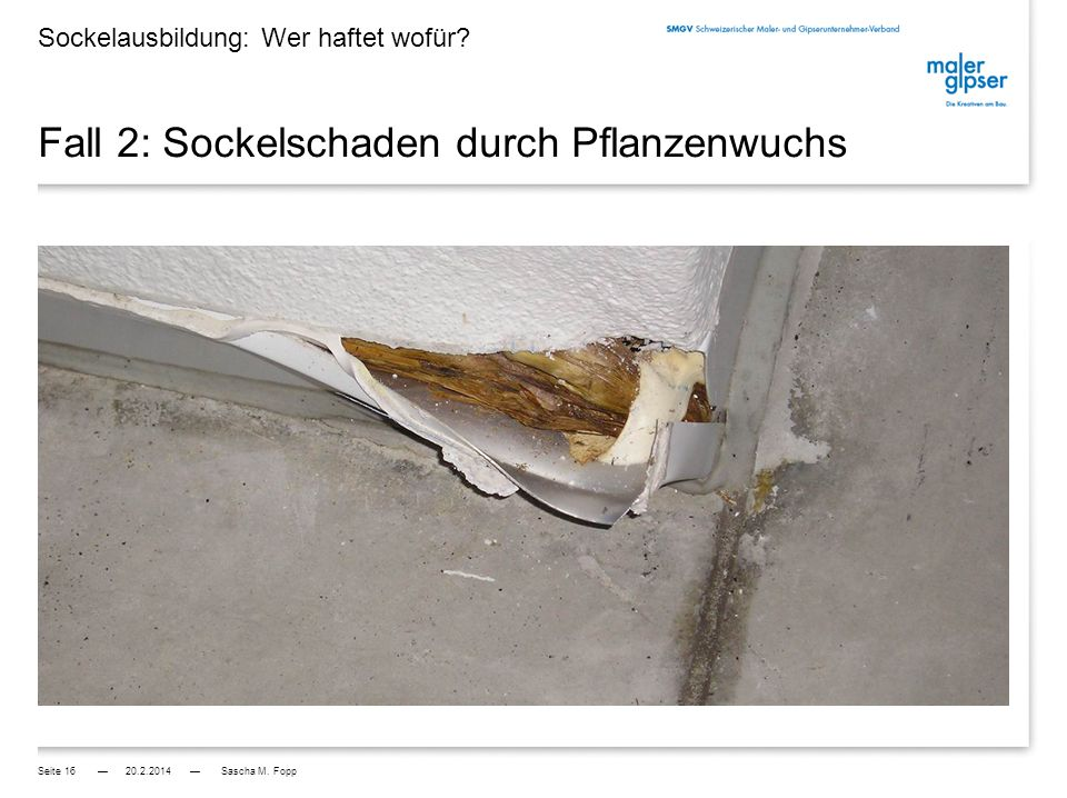 Fall 2: Sockelschaden durch Pflanzenwuchs