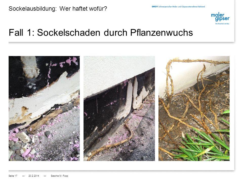 Fall 1: Sockelschaden durch Pflanzenwuchs