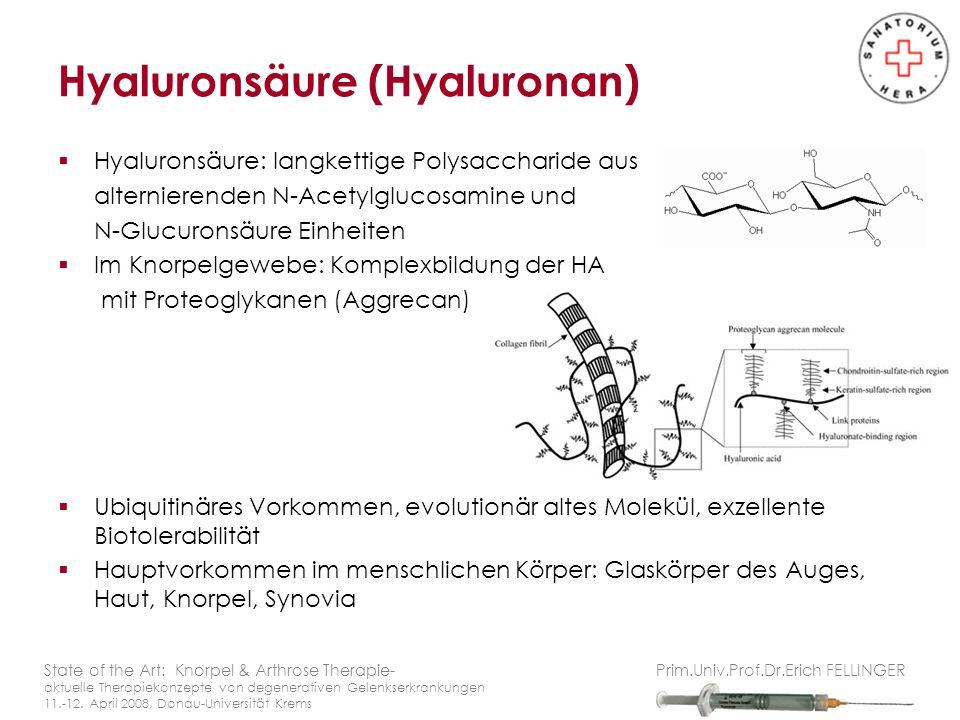 Hyaluronsäure (Hyaluronan)