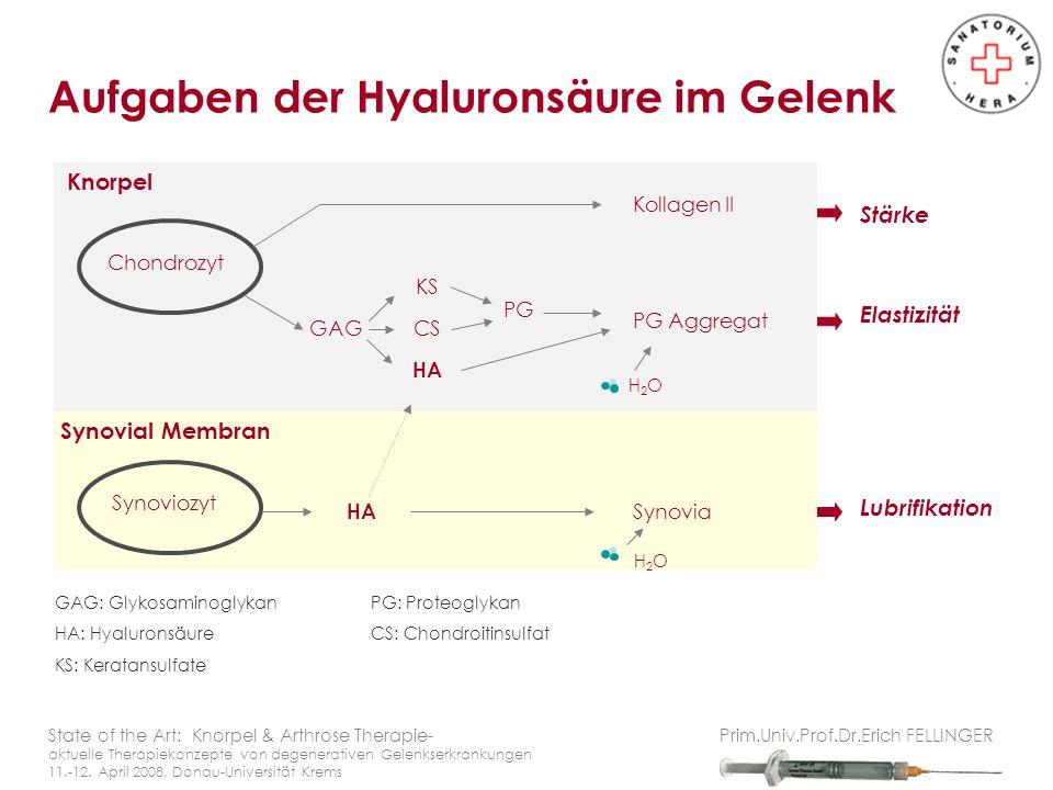 Aufgaben der Hyaluronsäure im Gelenk