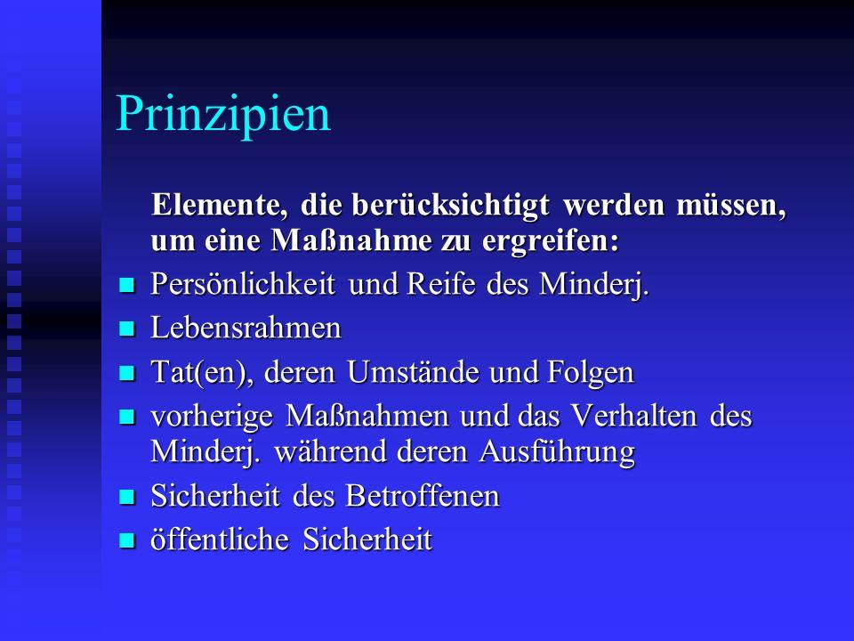 Prinzipien Elemente, die berücksichtigt werden müssen, um eine Maßnahme zu ergreifen: Persönlichkeit und Reife des Minderj.