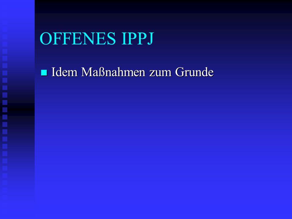 OFFENES IPPJ Idem Maßnahmen zum Grunde