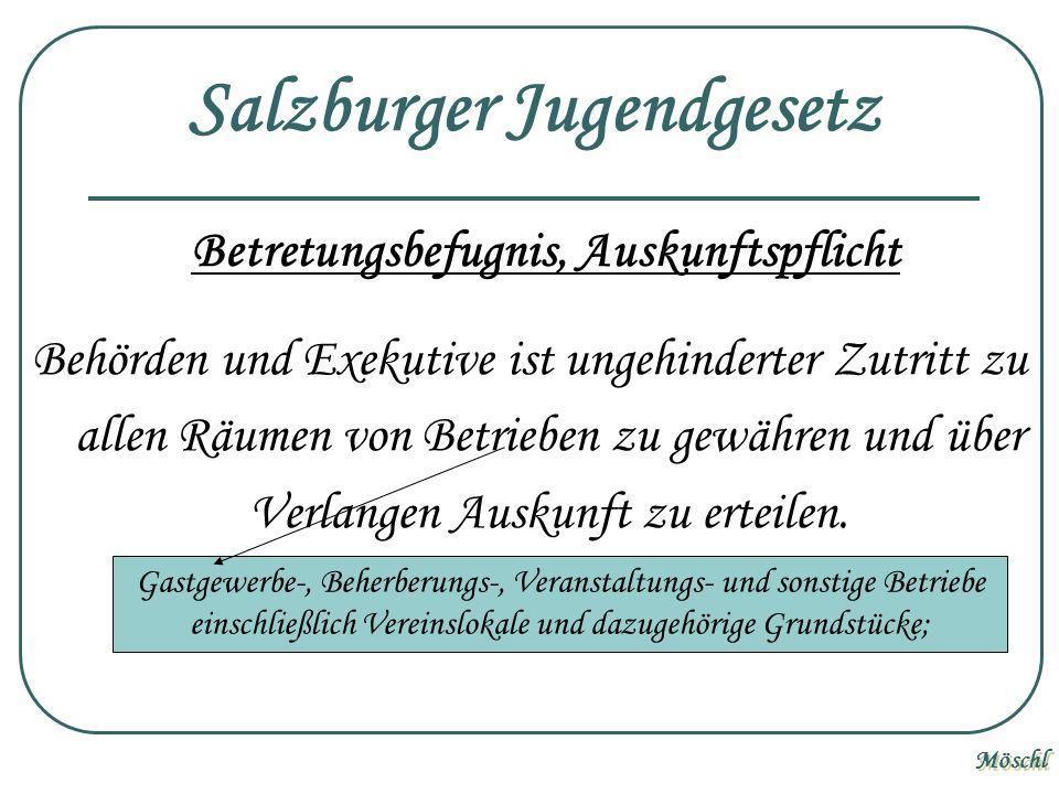 Salzburger Jugendgesetz