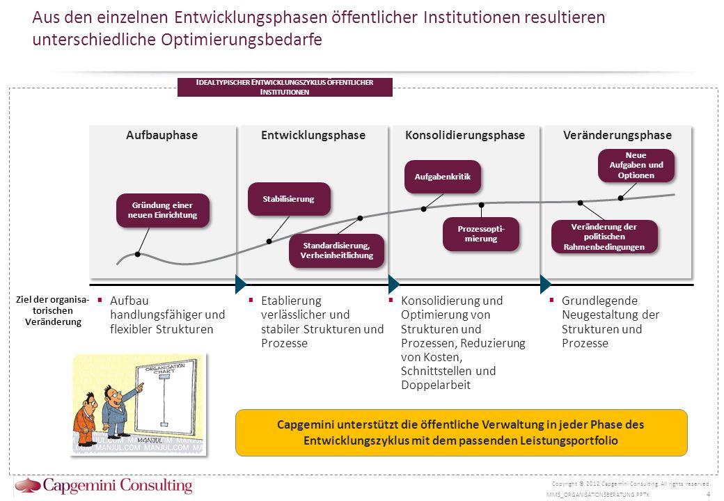 Aus den einzelnen Entwicklungsphasen öffentlicher Institutionen resultieren unterschiedliche Optimierungsbedarfe