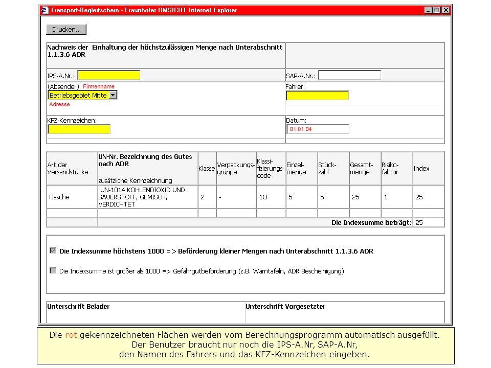 Die rot gekennzeichneten Flächen werden vom Berechnungsprogramm automatisch ausgefüllt.
