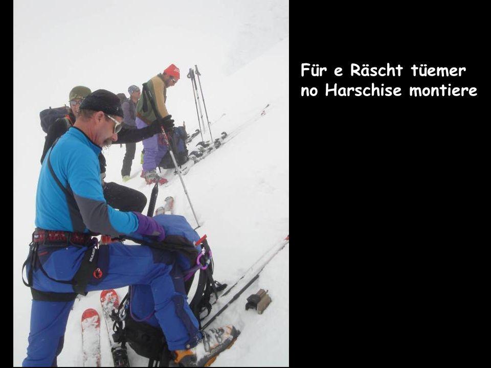 Für e Räscht tüemer no Harschise montiere