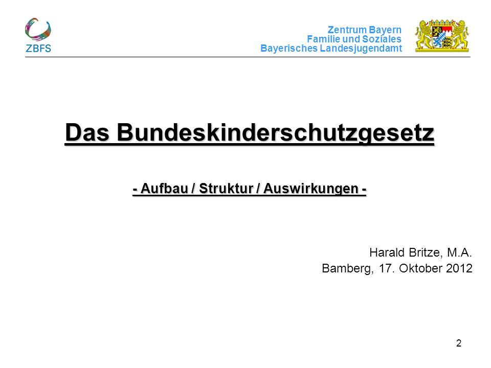 Das Bundeskinderschutzgesetz - Aufbau / Struktur / Auswirkungen -