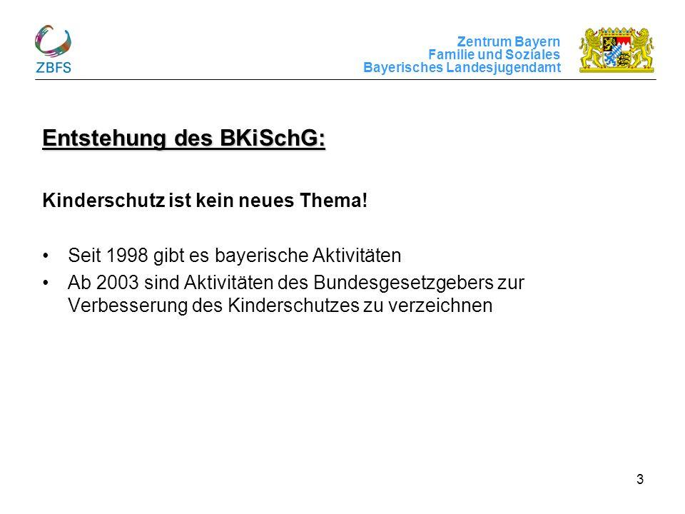 Entstehung des BKiSchG:
