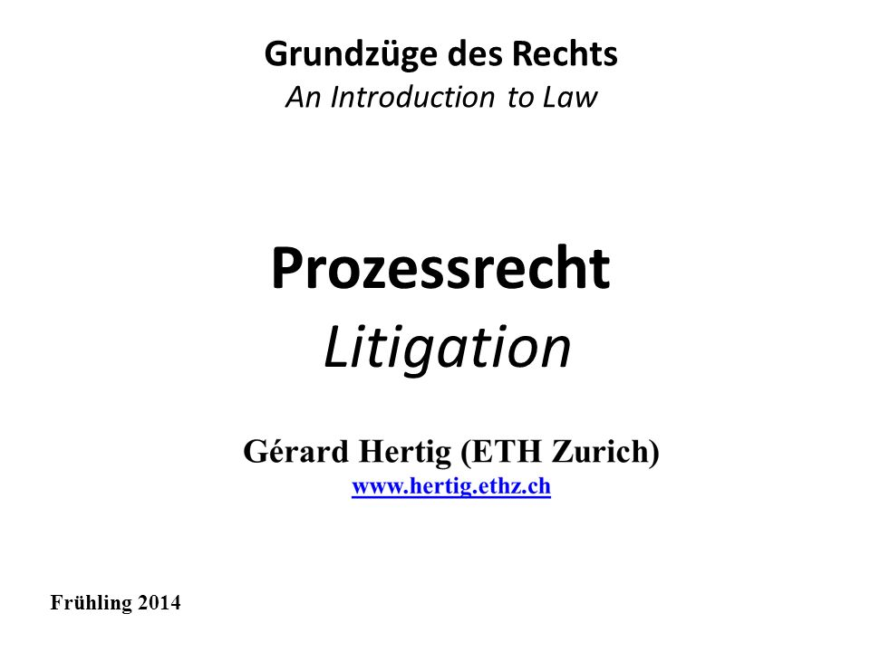 Prozessrecht Litigation